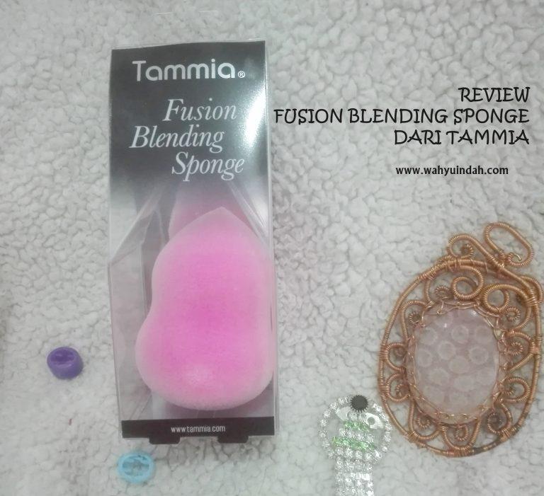 REVIEW FUSION BLENDING SPONGE DARI TAMMIA