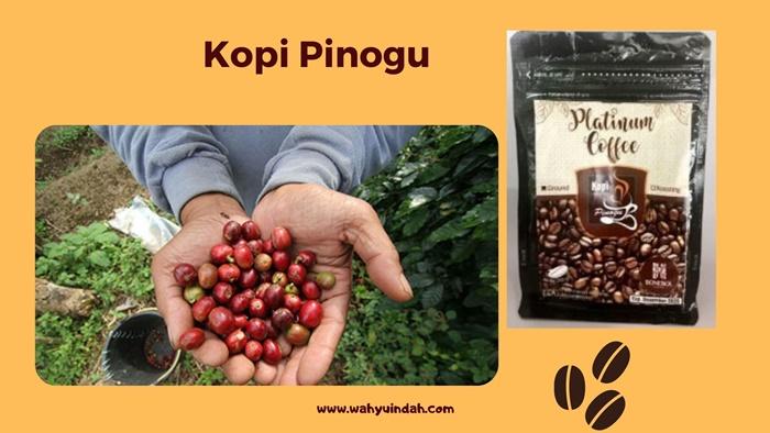 mengenal kopi pinogu sebagai komoditas lokal yang ramah lingkungan dan ramah sosial