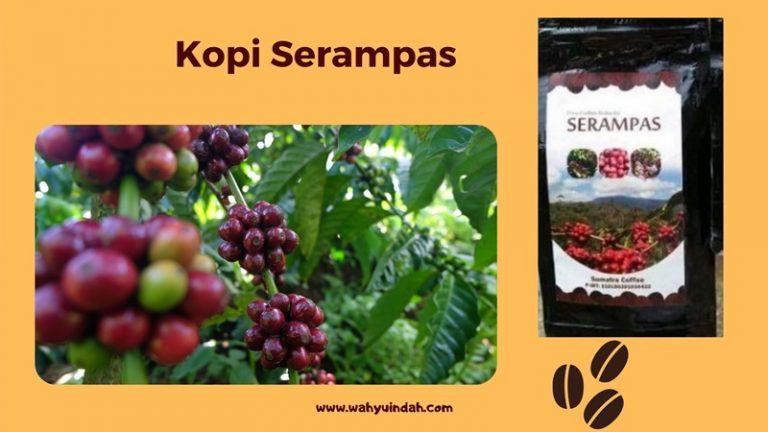 mengenal kopi serampas sebagai komoditas lokal yang ramah lingkungan dan ramah sosial